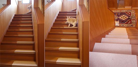 猫 階段 傷防止 スベリ止め おすすめ 口コミ