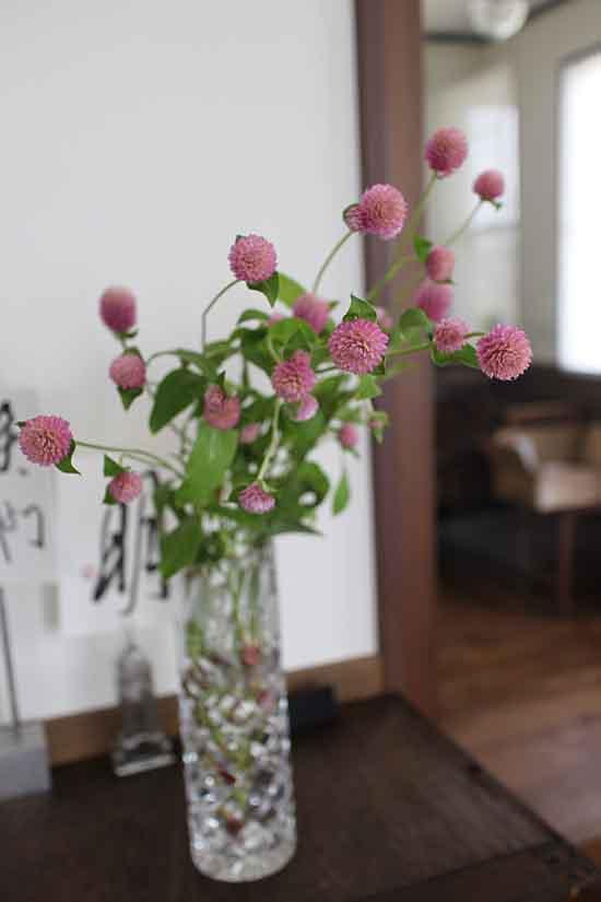 千日紅 うすいピンク アレンジ生花
