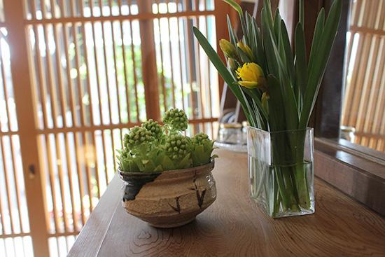 フキノトウ アレンジ 生花 飾る