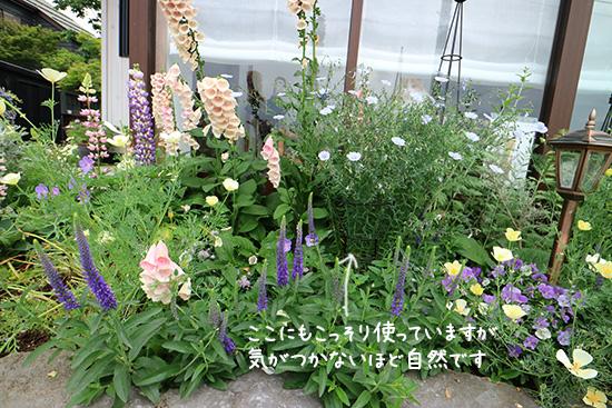 【背の高い草花 】植物が倒れる 防止 アイアン おしゃれ 画像1