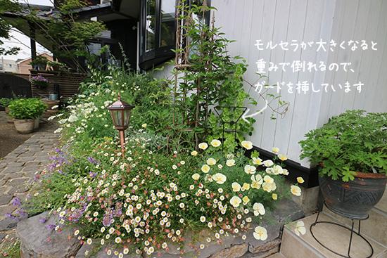 【背の高い草花 】植物が倒れる 防止 アイアン おしゃれ 画像