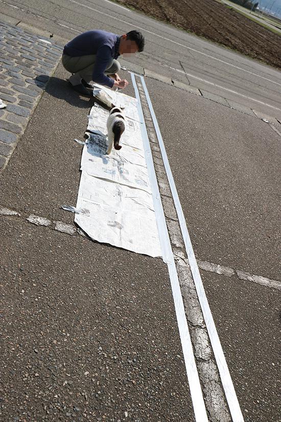 アスファルト 駐車場 白線 消す方法 スプレー 体験談ブログ 画像 2