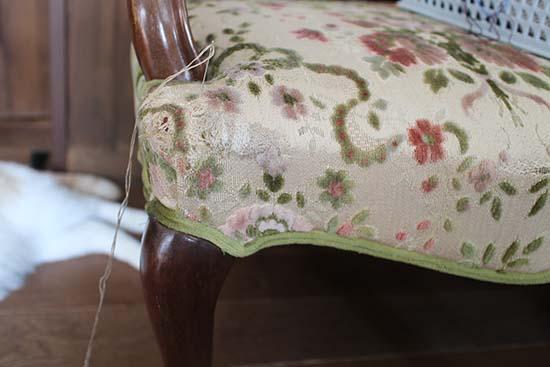 猫 ソファーに爪とぎ 対策 刺繍