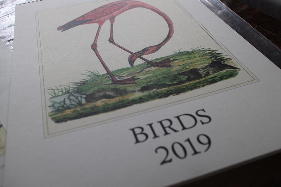 ボタニカルカレンダー Cavallini 2019 鳥 2