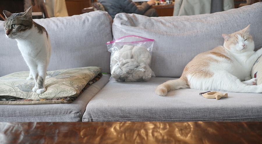 猫の抜け毛 再利用 保管 ジップロック袋2
