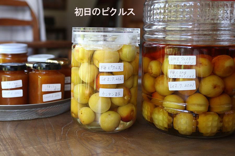 完熟梅 ピクルス ミツカン カンタン酢 作り方